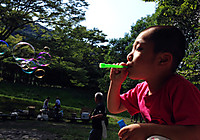Img_1908a